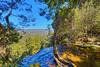 On the edge (Daniel J. Mueller) Tags: australia tasmania mountfield mtfield nationalpark park waterfall stream river tree forest trees sky russellfalls hdr