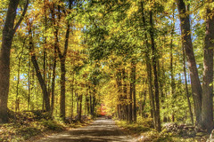 Country road (macnetdaemon) Tags: hdr canon 7d markii newhampshire country countryside autumn autumnal autumnleaves