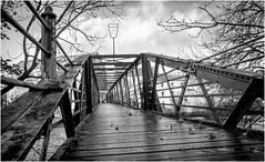 Barnard Castle . (wayman2011) Tags: lightroomfujifilmxpro1fujifilmxf18mmf2 wayman2011 bwlandscapes mono bridges footbridges rivers rivertees pennines dales teesdale barnardcastle countydurham uk