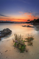 Lancieux ... What else ? (Ludovic Lagadec) Tags: lancieux bretagne breizh brittany beach cotesdarmor paysage poselongue longexposure landscape ludoviclagadec coucherdesoleil colors nature briantais summer