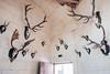 Chambord (julien `) Tags: chateau sologne x70 cerfs loire trophés chambord fujix70