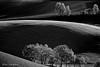 Smooth hills (Luca-Anconetani) Tags: hills natura lucaanconetani luceradente colline collinemarchigiane fantasticnature nature italia panoramimarchigiani panorami landscapes lights controluce contrast bw bn monochrome monocromatica
