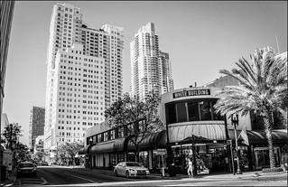 White Building, Downtown Miami, Monochromes. 6