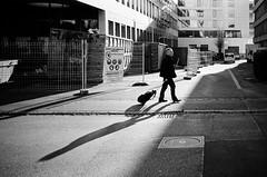 black and white (gato-gato-gato) Tags: 35mm ch contax contaxt2 iso400 ilford ls600 noritsu noritsuls600 schweiz strasse street streetphotographer streetphotography streettogs suisse svizzera switzerland t2 zueri zuerich zurigo z¸rich analog analogphotography believeinfilm film filmisnotdead filmphotography flickr gatogatogato gatogatogatoch homedeveloped pointandshoot streetphoto streetpic tobiasgaulkech wwwgatogatogatoch zürich leicamp mp leica manualfocus manuellerfokus manualmode rangefinder messsucher black white schwarz weiss bw blanco negro monochrom monochrome blanc noir strase onthestreets mensch person human pedestrian fussgänger fusgänger passant sviss zwitserland isviçre zurich
