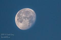201712057d2_00A1217.jpg (Spirithills (Leah Gray)) Tags: moon esquimaltlagoon