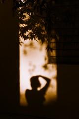 (eigg77) Tags: silhouettes shadows shadowsandlight portrait portraitphotography selfportrait autumn fall dark misterious mistery