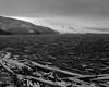 Spirit Lake, Mount St. Helens (austin granger) Tags: spiritlake mountsthelens volcano mtsthelens mountsthelensvolcanicnationalmonument evidence eruption logs death geology change impermanence snow film gf670