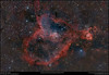 The Heart & Fish Head Nebulae (Terry Hancock www.downunderobservatory.com) Tags: qhy qhy367c universetoday sky space astronomy astrophotography astroimaging cosmos