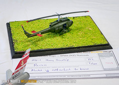 A2 - HU-1 Huey Gunship - Tish Glasson