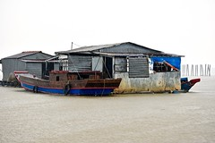 Downpour:  Dock, Boats, ~Midway in the Mekong River (Ginger H Robinson) Tags: downpour rain wet droplet water dock pole tire boat shed midstream midway mekong river bentre province southern vietnam southeast asia autumn metal sheet