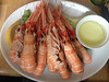 Mallaig Langoustines (nakwoodford) Tags: scotland walking knoydart