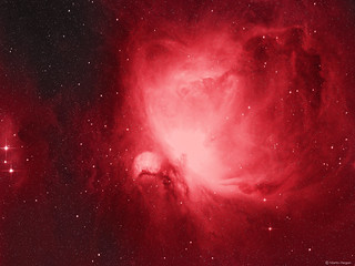 The Orion Nebula Hydrogen gas and dust study