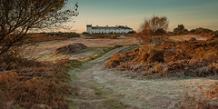 Dunwich Heath Suffolk (Albert's Photo's) Tags: shaw graham suffolk dunwich heath sunrise canon mkiii 5d frosty filter lee uk frost cottages coast guard