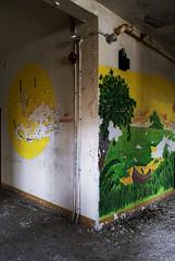 Grin And Bear It (Wєirdlig) Tags: asylum abandoned urbex exploring asbestos creepy trespass exploration asbtract painting hospital historic