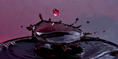 The Splash and Drop (GeorgeN66) Tags: splashart splash speedlight sbr200 sb800 water waterdrops waterdroplets watercolours droplets drops d810 dropping dropper art creativeart c