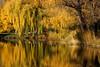 Autumn in Vienna 17.03 - explored (lady_sunshine_photos) Tags: alcatel atmosphäre atmosphere at austria österreich europa europe farbwolke flickrexploreme ladysunshine ladysunshinephotos landschaft landscape natur nature outdoor platz space ruhe quiet herbst autumn sonyalphanex7 stille silence stimmung mood supershot theworldisbeautiful travel reisen wonderfulworld 2017 wasserpark waterpark goldenlight autumninvienna herbstinwien yellow gelb dreamland vienna wien wasser water pond teich spiegelung reflection bäume trees bank bench floridsdorf waterparkfloridsdorf wasserparkfloridsdorf goldennovember goldenernovember city stadt relax
