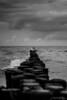 Waves Crash, Clouds roll (janmalteb) Tags: ahrenshoop fischland dars deutschland germany ostsee baltic sea ocean meer waves wellen wolken clouds breakwater buhnen birds vögel möwen seagulls schwarz weiss black white 50mm canon eos 1000d nature landscape