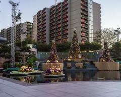 X-mas at Cal Plaza (waterman1) Tags: dtla downtown losangeles hasselblad hasselbradx1d x1d xcd45mm calplaza