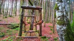 Puente a la naturaleza (jumaro41) Tags: puente naturaleza senderismo paseo árboles bosque eugi ejercicio navarra hojas otoño monte montaña mountain nature natural tree verde vida