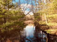 In Foster on an Autumn afternoon (Rick Payette) Tags: iphone8plus swampmeadow coveredbridge foster rhodeisland