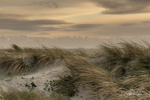 West Wittering-3