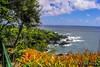Palapala Ho'omau Congregational Church | Maui (M.J. Scanlon) Tags: palapalahoomauchurch maui church mojo scanlon digital hawaii jungle water ocean sea island remote rock sky blue photo photographer photography picture capture camera trip travel