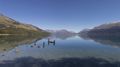 Little Paradise Wharf, Lake Wakatipu, New Zealand (Arran Bee) Tags: reflection water nature landscape lake wharf quiet tranquil travel new zealand panorama canon 80d outdoor mountains sky horizon