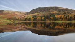 Reflecting in Autumn (G-WWBB) Tags: autumn colour colours trees leaves golden orange green brown dovestone dovestonereservoir mountain grass reflections waterfront water waterside reflect reflecting reservoir oldham saddleworthmoor