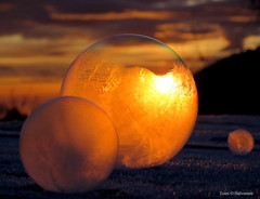 Frozen soap bubbles (Toini O Halvorsen) Tags: cold frosty sun sunset