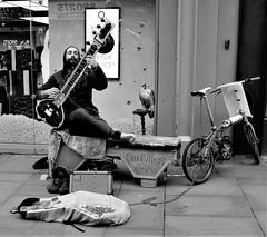 omnivibes (LozHudson) Tags: bird falcon performer musician streetperformer streetmusician street streetphotography mono monochrome blackwhite manchester busker fuji x100s fujifilmx100s sitar omnivibes