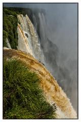 C17_3711a (@Chris_Photos) Tags: waterfall nikon d750 iguassu
