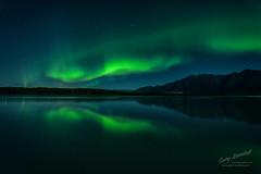 Emerald Night (Gary Randall) Tags: dsc92552 alaska aurora auroraborealis northernlights knikriver anchorage nightphotography