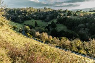 Box Hill from half-way up the Zig-Zag road, near Dorking, Surrey.