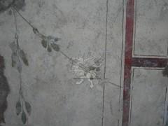 La latrina Romana di via Garibaldi _15