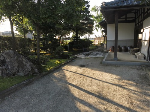 afternoon light on November 2 near Sabae city limit