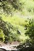 PhilTrek_054 (GGourdé) Tags: day3 pueblano wildturkeys