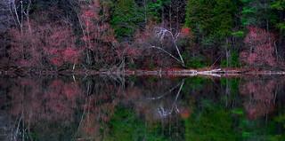 Autumn at Bond Lake