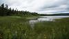 By the Pond D7C_5107 (iloleo) Tags: landscape newfoundland cloudy pond nedspond stephenville nature nikon d750 summer