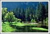 Lovely Springtime - Yosemite Valley, California - 1976 (sjb4photos) Tags: california yosemitenationalpark mercedriver yosemitevalley