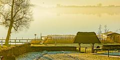 14-03-13 pan zarr sonauf 2 dsc00152-1 (u ki11 ulrich kracke) Tags: baumkrone baumkronealt nebel panorama rasen raureif schilf schwalbe sonnenaufgang terrasse tor vertikotieren zarrentin vogel