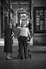 Giove_Vincenzo_528#8