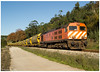 Roliça 07-12-14 (P.Soares) Tags: comboio cp comboios carga cpcarga caminhodeferro diesel 1960 1973 linha locomotiva linhas locomotivas laranja