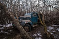 Dodge (gerrypocha) Tags: truck derelict lost forgotten vintage prairie saskatchewan old