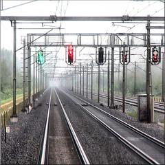 on the fast track (Bernergieu) Tags: sbb schweiz switzerland train tracks