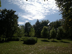 2017-09-18-11462 (vale 83) Tags: public garden pančevo serbia nokia n8 friends flickrcolour coloursplosion colourartaward autofocus beautifulexpression