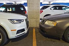 Nose to Nose (Whistler Whatever) Tags: white grey a4 allroad estate parked suv dual two a6 car concrete pillar parkinglot thenandnow brown ikea s6 shoppng cashmerepearl oldandnew avus audi stationwagon