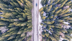 Fast car on a road from a bird's eye view (partsavatar) Tags: aerial asphalt birdseyeview car cardriving carroad countryside daylight drivingcar droneshoot fastcar forest greentrees journey nature pinetrees road rural scenery season speed street topview traffic transportation travel trees woods