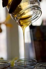 D009-©N.GOMEZ_Maison-du-Terroir-BD-copyright (roquebrunesurargens_lesissambres) Tags: agriculteur apiculture miel miseensituation nicogomez officedetourismeroquebrunesurargens publicité roquebrunesurargens