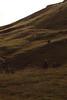 (Sofia Podestà) Tags: landscape mountain alps alpi dolomites dolomiti italy italia montagna paesaggio summer 2017 sofia podestà sofiapodestà sofiapodesta rocks nature
