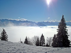 Rigi And The Sea Of Fog (Daphne-8) Tags: nebelmeer mist fog clouds wolken rigi mountains berge bergen alps alpen alpes alpi schweiz switzerland suisse suiza svizzera svizra suíça winter inverno invierno hiver